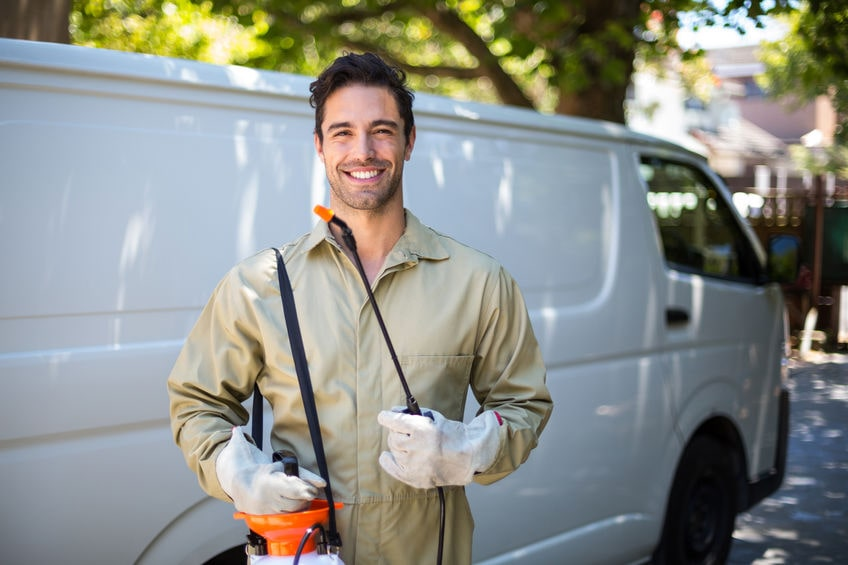 Pest Control Tips for San Diego Homeowners