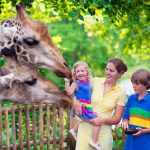 san diego zoo family activities